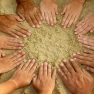 People's mandala - 12 hand